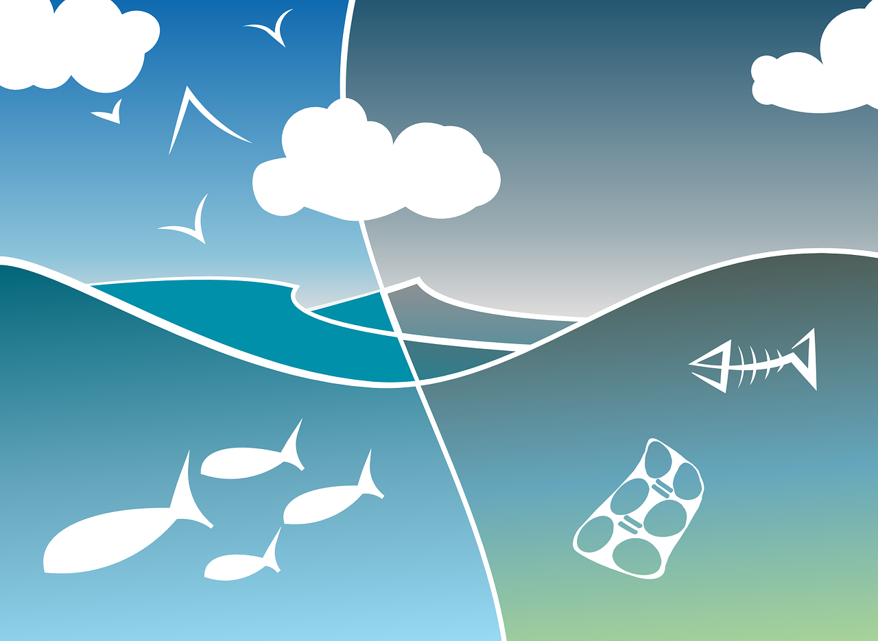 Cuidem l'ecosistema aquàtic, siguem sostenibles