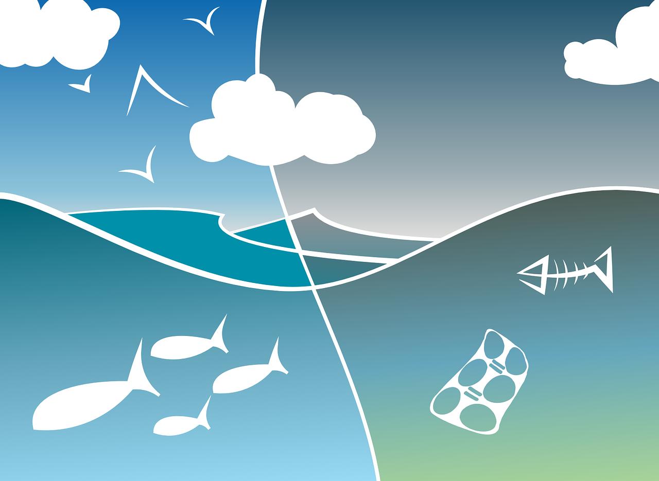 sostenibilitat aigua